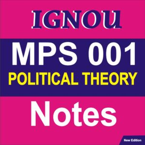 political theory notes