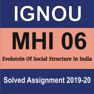 MHI 06 Evolution of Social Structure